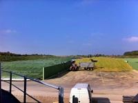 Die erste Ernte wird ins Fahrsilo eingebracht (28.09.2011)